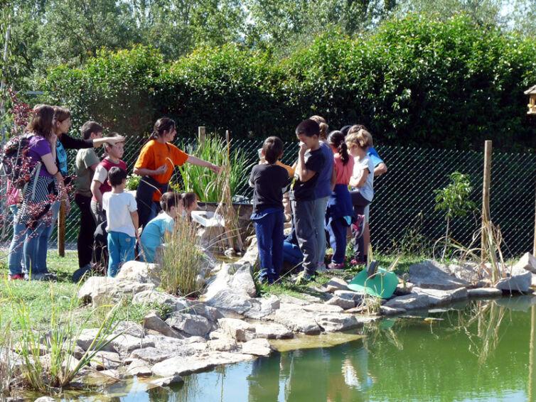 Activitats d'educació i sensibilització ambiental